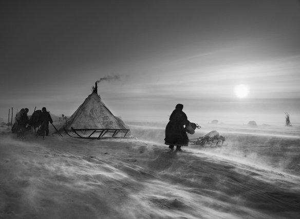 Выставка фотографий изпроекта «Генезис»