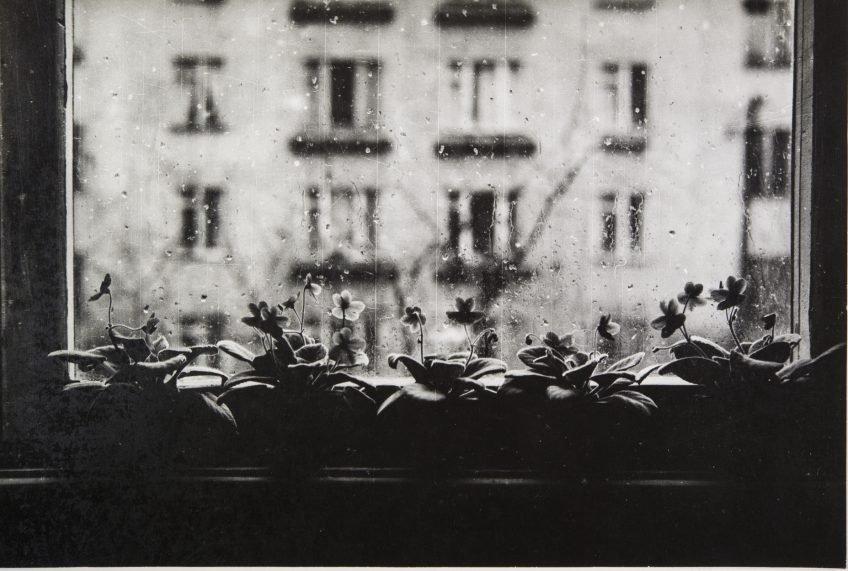 Цикл лекций «Петербургская фотография конца ХХ— начала ХХI века влицах»