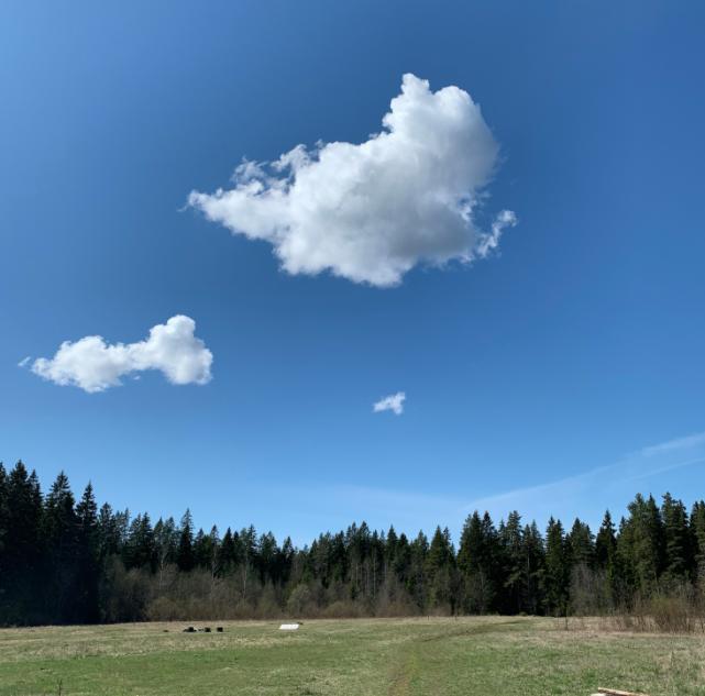 Выставка «Облака времени»