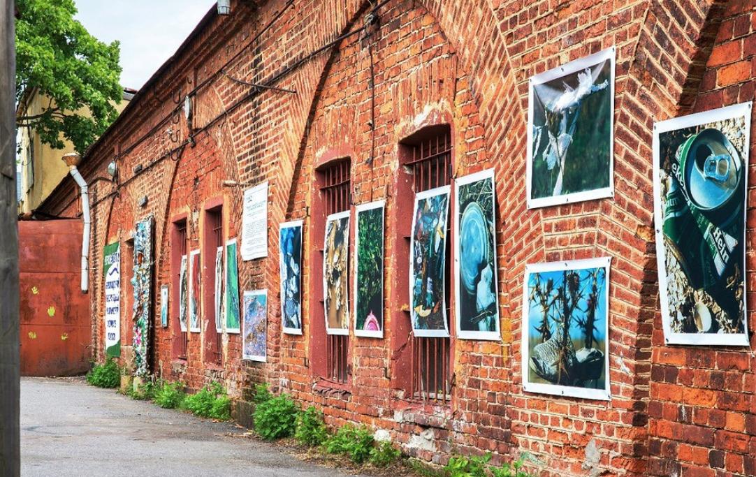Международный экологический фестиваль искусств «КронФест 2019»