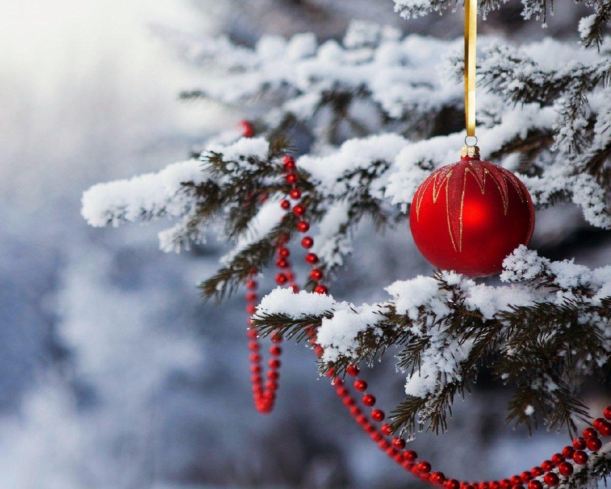 Топ-10 интересных событий вСанкт-Петербурге навыходные 22 и23 декабря