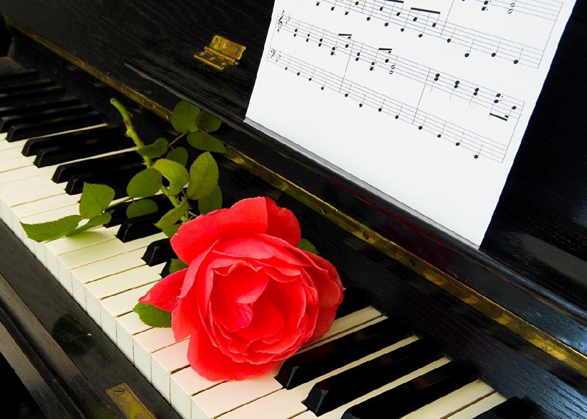 красивые картинки про пианино диетологи