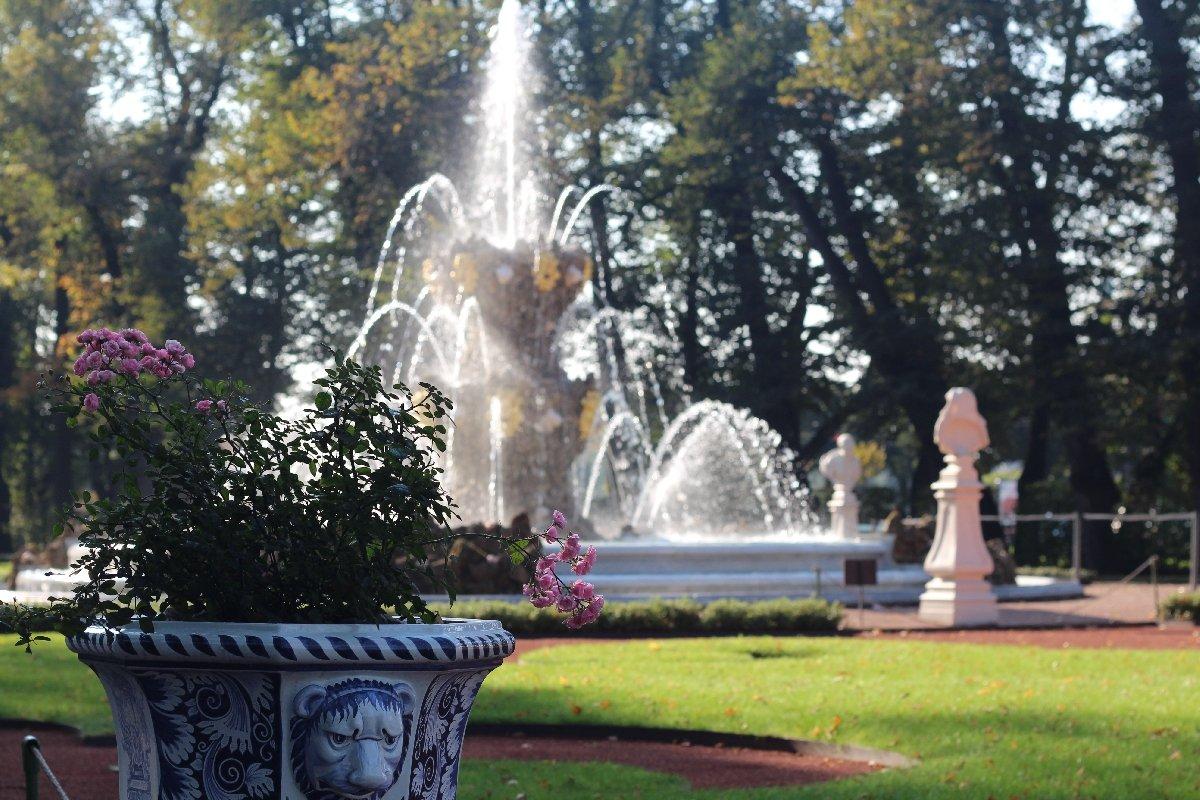 Фестиваль «Летний сад— 315»