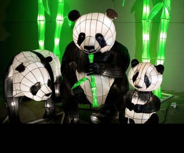 Выставка световых фигур «Планета света»