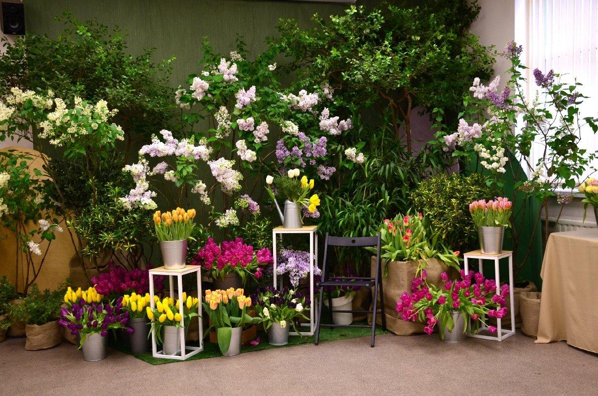 Выставка сирени итюльпанов «Мечты овесне» 2021