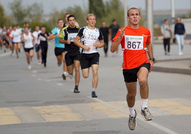 47-й легкоатлетический пробег «Гатчина– Пушкин»