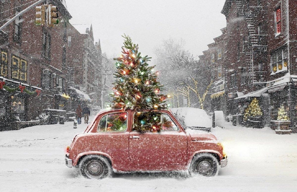 Зимний фестиваль «Сейчастье»