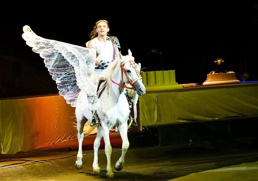 Шоу Большого Московского цирка «Эмоции и..»