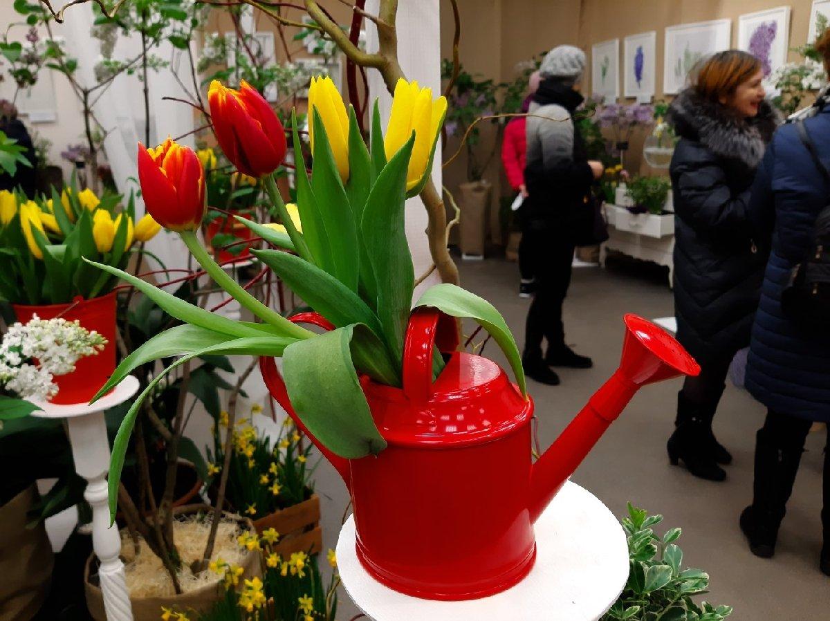 Весенняя выставка тюльпанов 2020