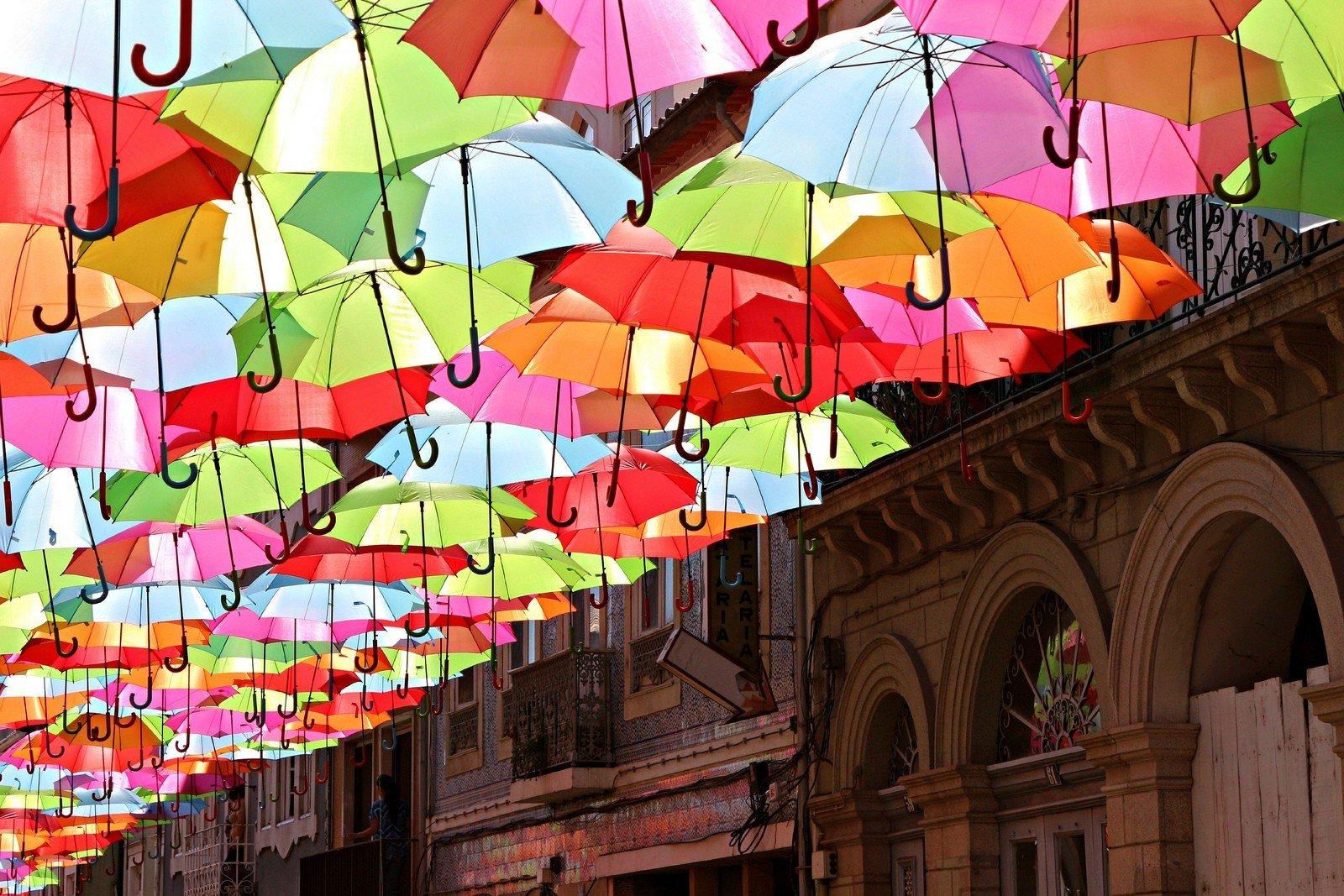 Фотовыставка «Цветной Петербург»