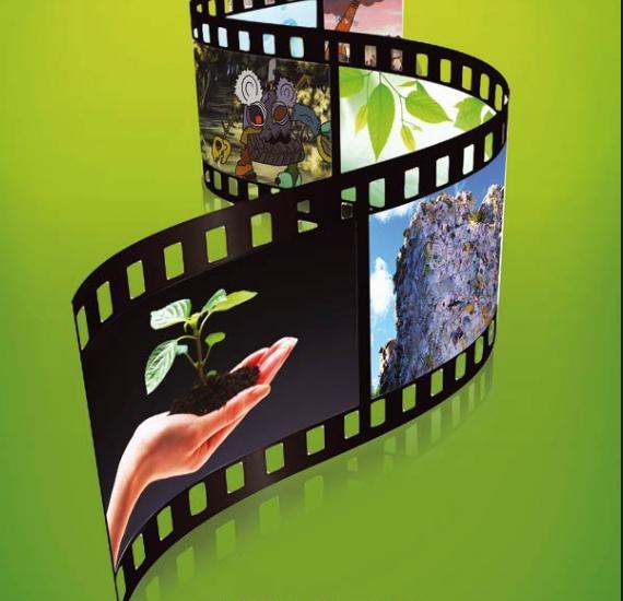 VIII Всероссийский экологический кинофестиваль «Меридиан надежды»