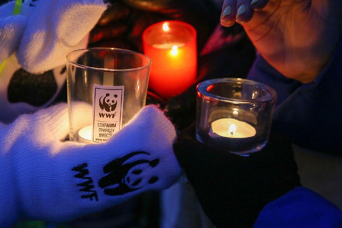 Всемирная экологическая акция «Час земли» 2020