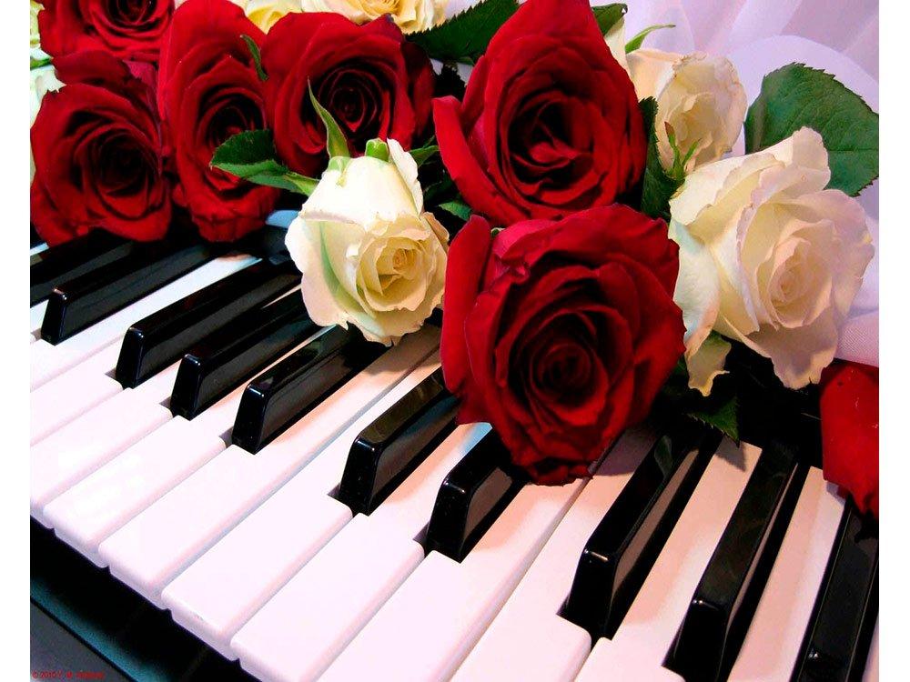 Концерт «Музыка среди Цветов»