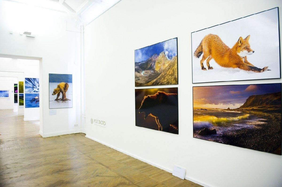 Выставка «Первозданная Россия» вРосфото