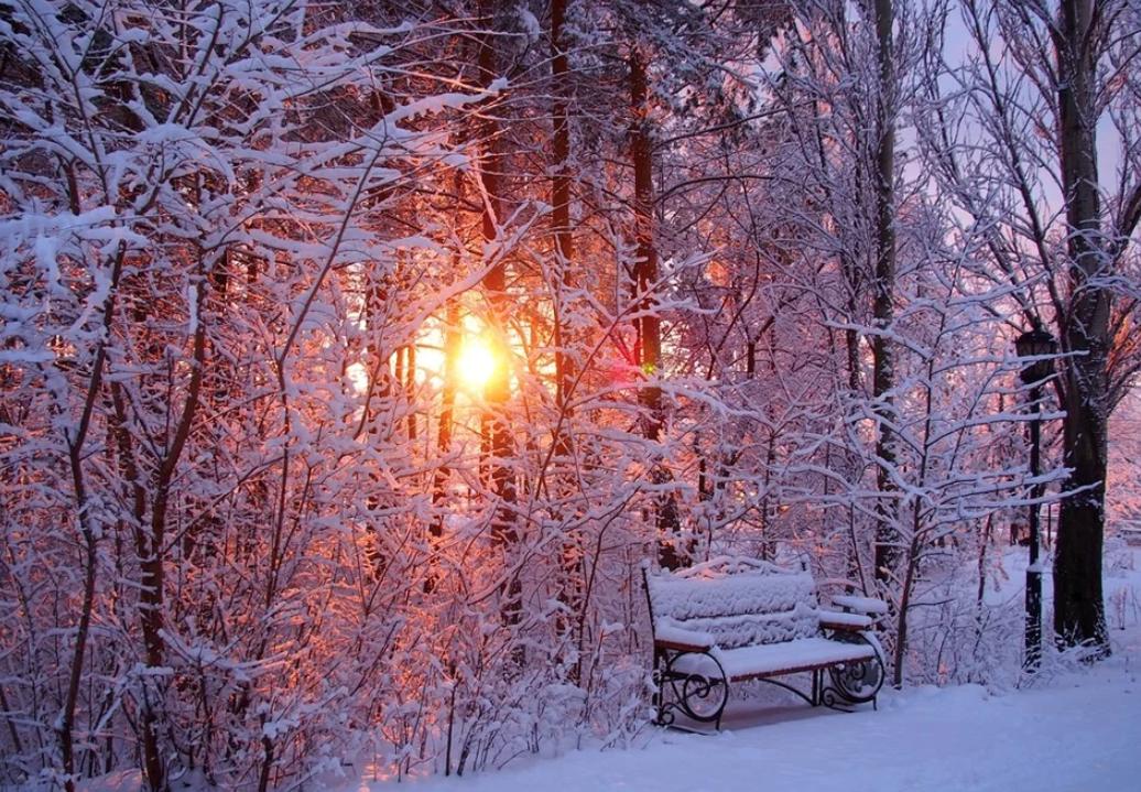 Топ-10 интересных событий вСанкт-Петербурге навыходные 7 и8 декабря