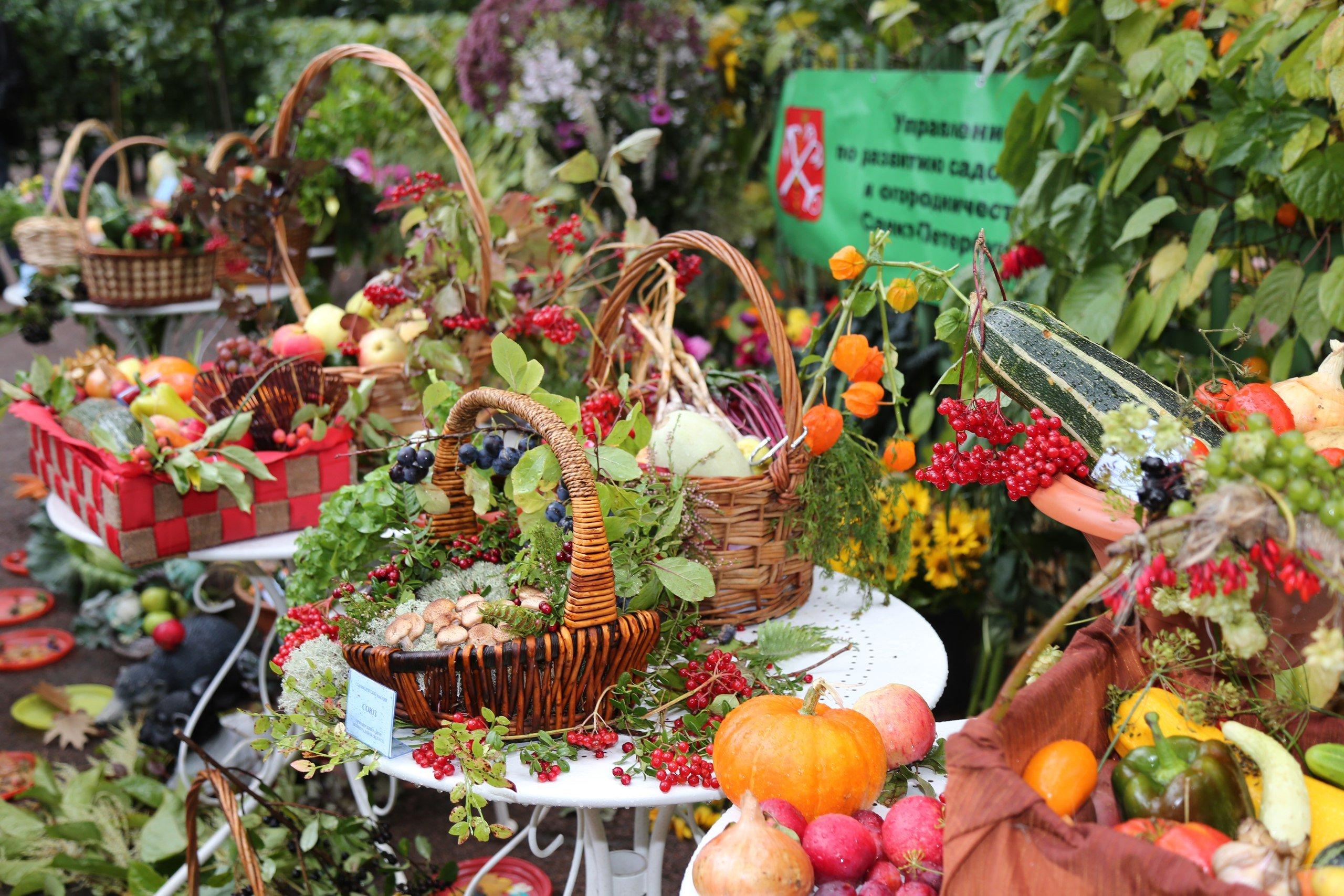 Праздник закрытия фонтанов исбора урожая вЛетнем саду 2016