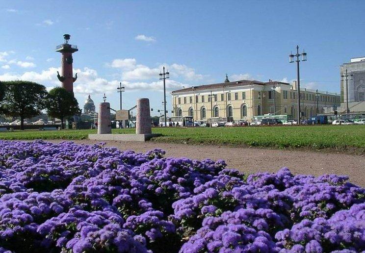 Зоологический музей Российской академии наук