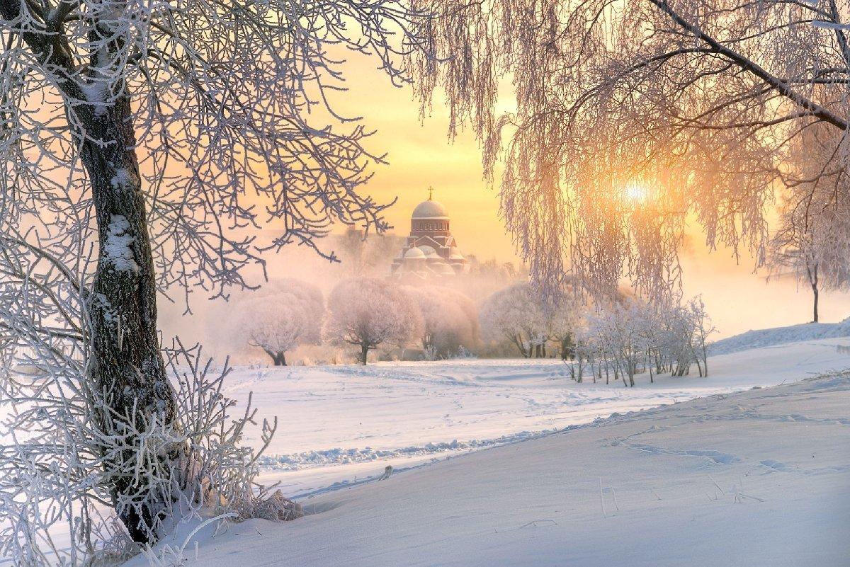 Топ-15 интересных событий вСанкт-Петербурге навыходные 30 и31 января 2021