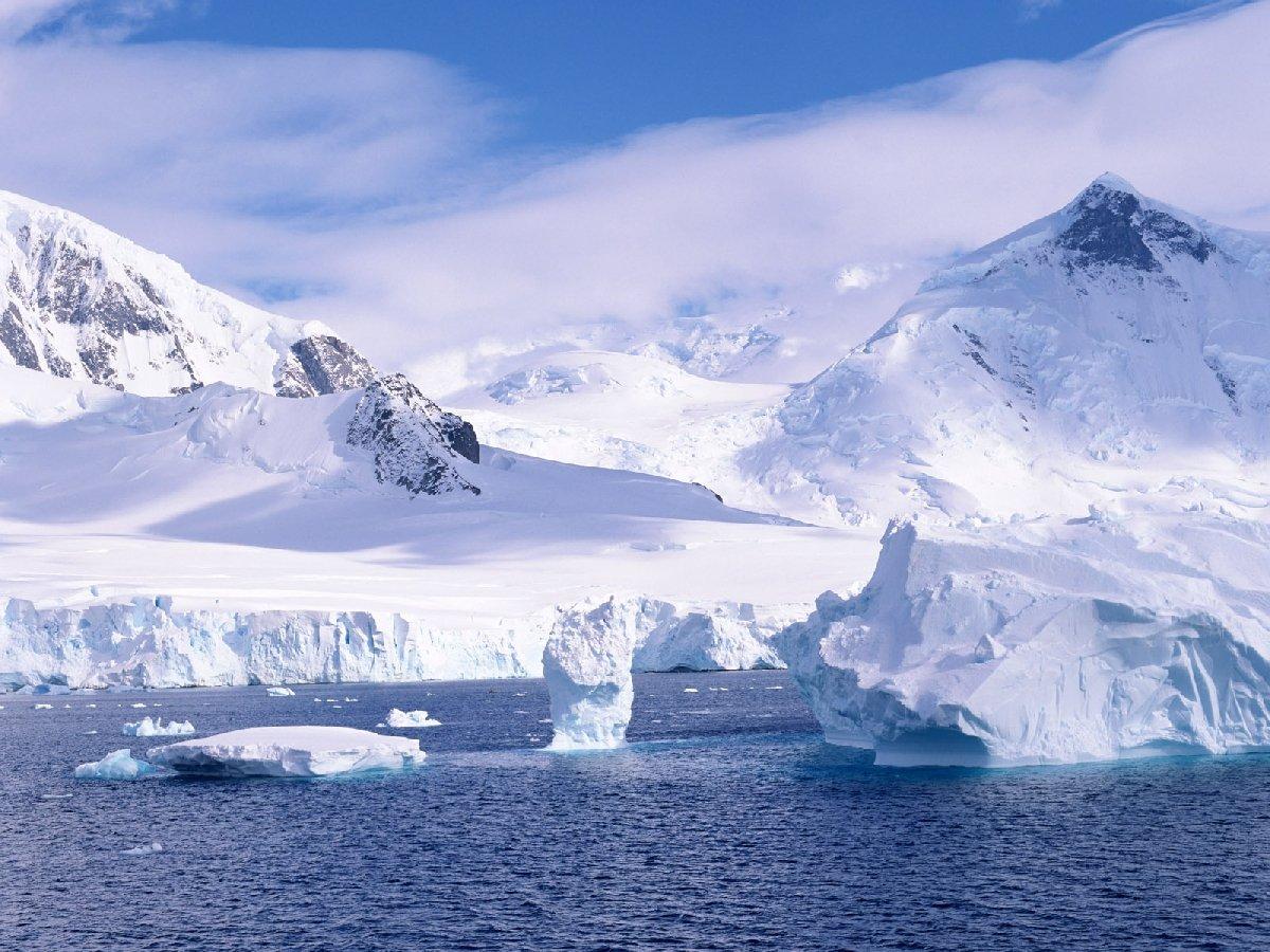 Фильмы обистории изучения Арктики