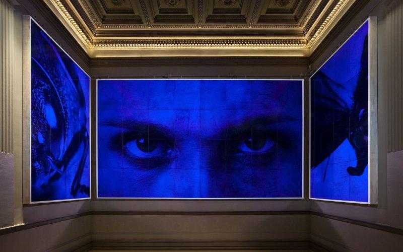 Выставка «Ян Фабр: Рыцарь отчаяния— воин красоты»