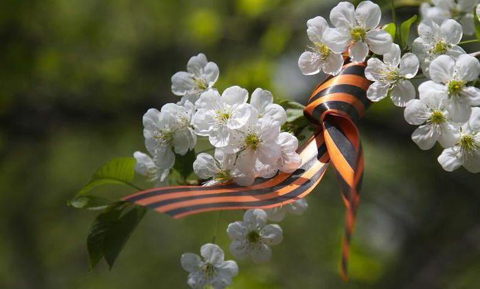 Праздник «Весна Победы» 2016