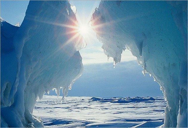 Выставка «Норвегия— Россия: сила притяжения— Арктика»