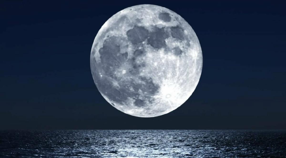 Фестиваль «Орган вПланетарии. Белые Ночи»