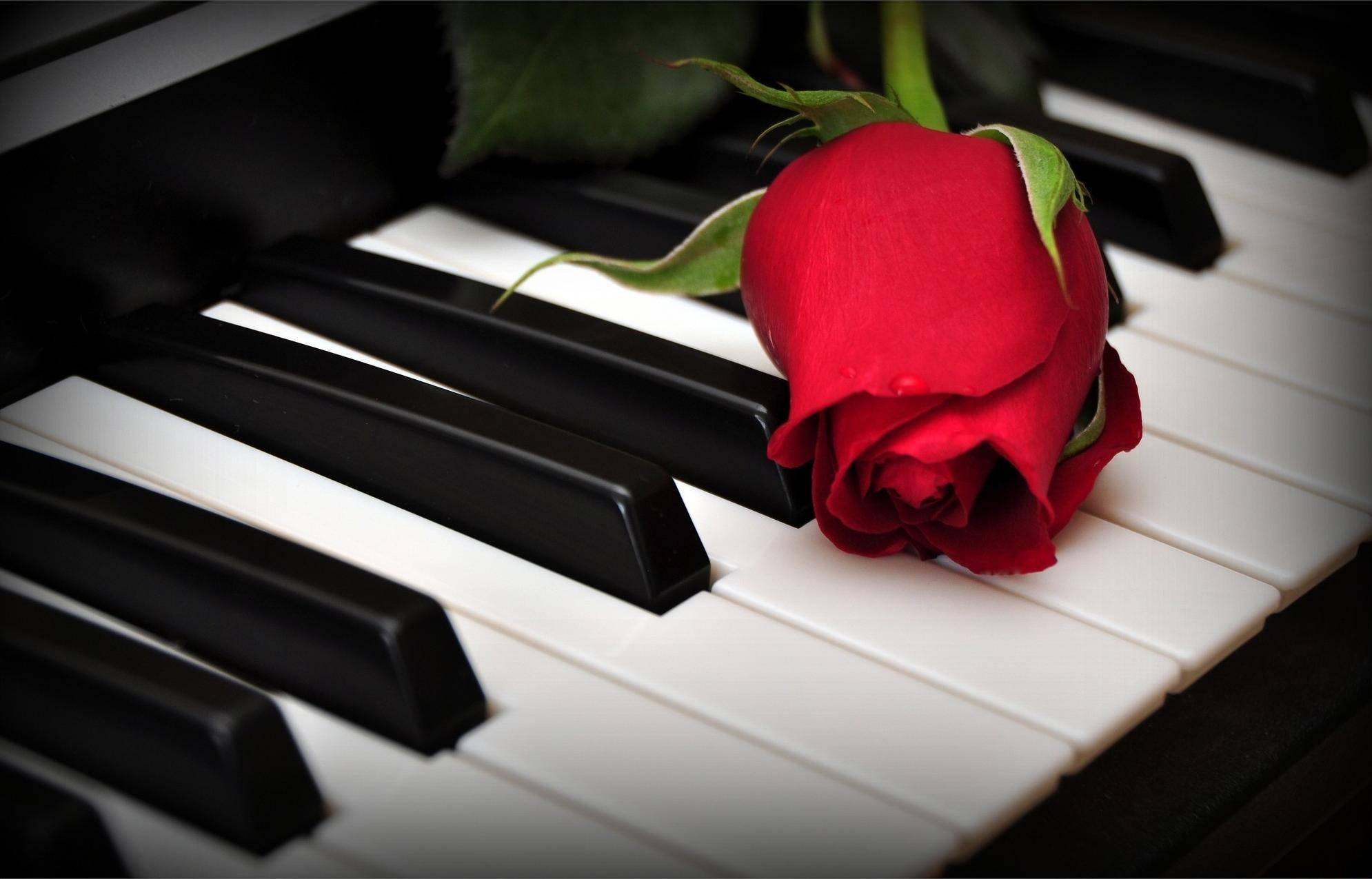 Концерт «Музыка Любви»