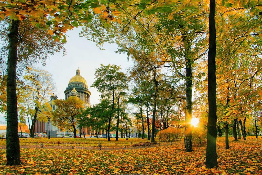 Топ-10 интересных событий вСанкт-Петербурге навыходные 8 и9 сентября