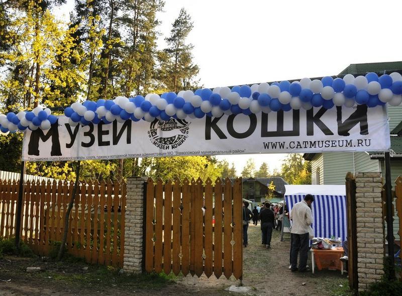 Арт-пикник иДень дарения вмузее Кошки 2017